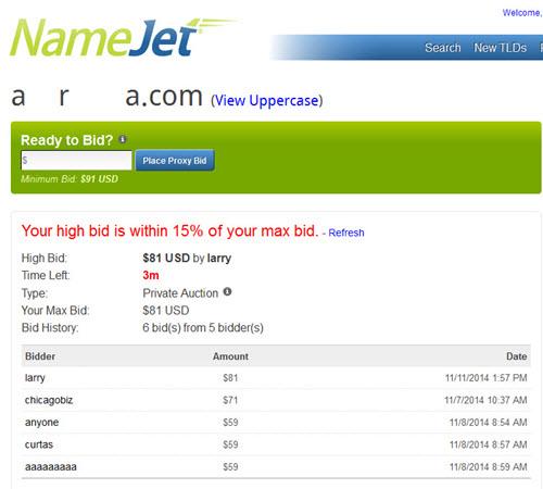 domain_bidding